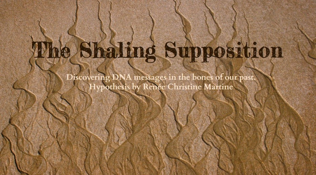 the shaling supposition